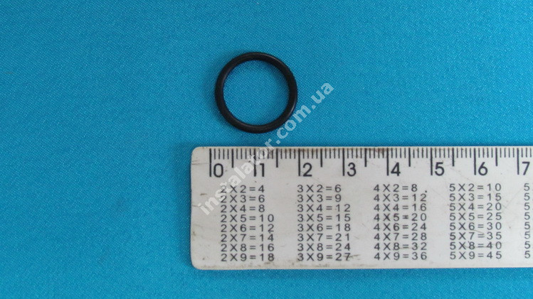 981163 Сальник (прокладка) теплообмінника ГВП VAILLANT  full-image-2